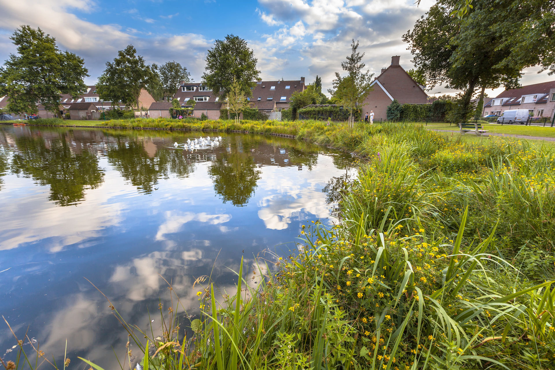 Buying a home in a flood plain or flood zone